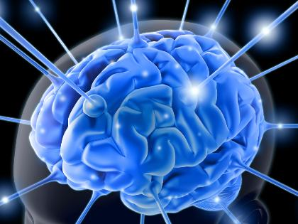 an artists rendering of the brain with neurons firing