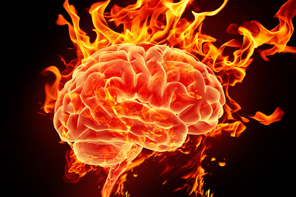 Image result for brain on stress